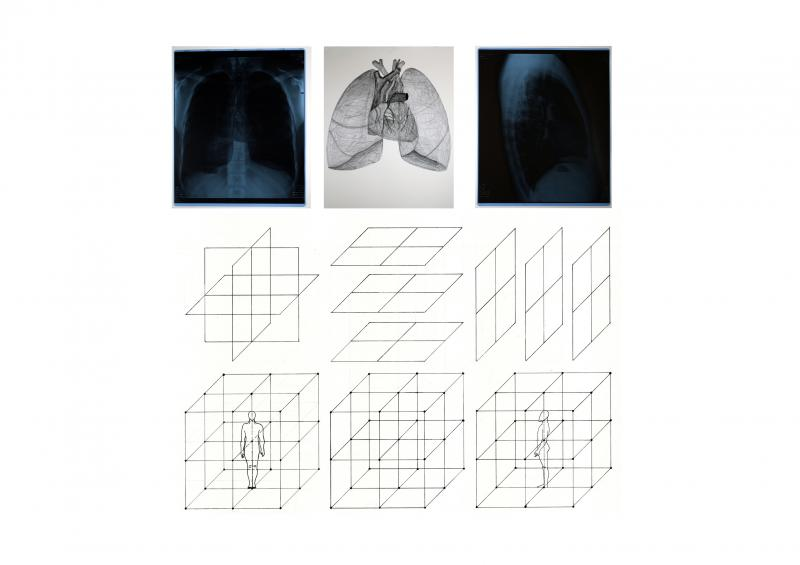 Analysing the human body in terms of the space around it and its inside.