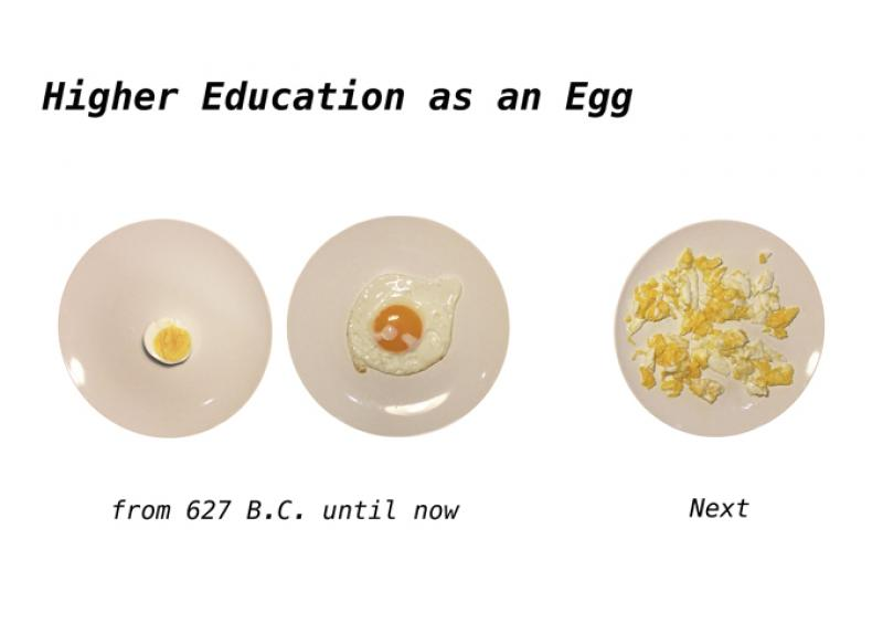 Higher Education as an Egg